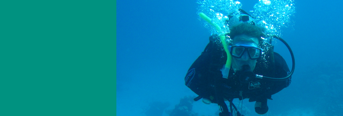 Studying the Ecosystem of the Red Sea