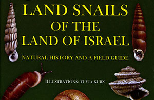Land snails of ISrael